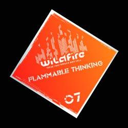 Flammable Thinking