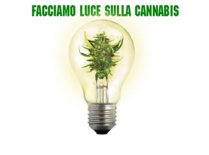 Cannabis Tipo Forte – III Edizione