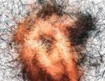 Spam Art - Come riciclare lo Spam trasformandolo in arte