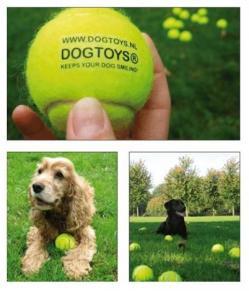 Cani promoter: Come un animale può influenzare il comportamento di acquisto