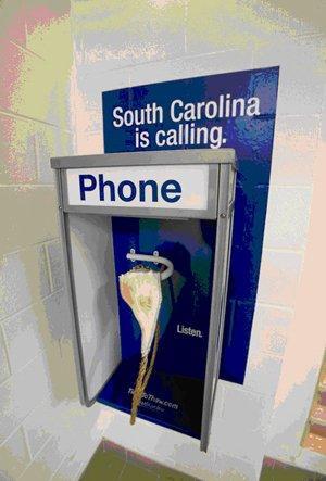 South Carolina is Calling