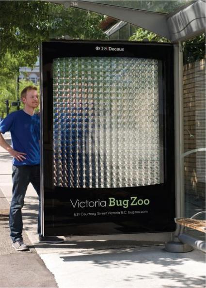 Victoria Bug Zoo: mai visto così!
