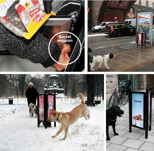 Cartelloni appetitosi per cani e padroni