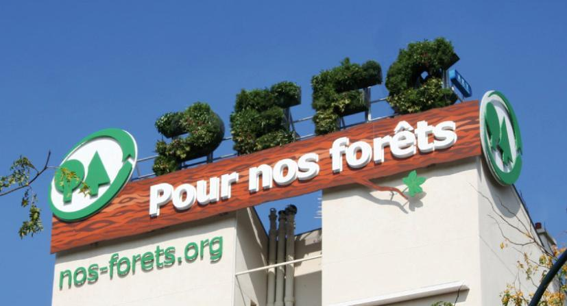 PEFC: Preserviamo le nostre foreste