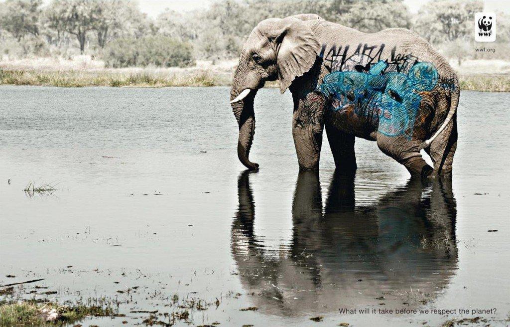 WWF e la nuova campagna per la salvaguardia della biodiversità