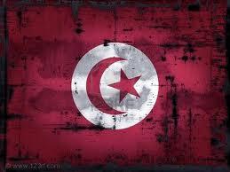 La rivoluzione tunisina vista con gli occhi di twitter e del social web [CASE STUDY]