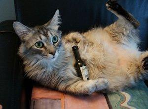 Buon Anno! E non postate quando siete ubriachi!