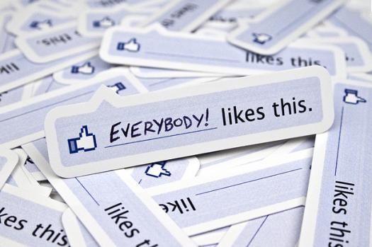 Usare Facebook per vendere? I risultati della campagna Terranova [ESCLUSIVA]