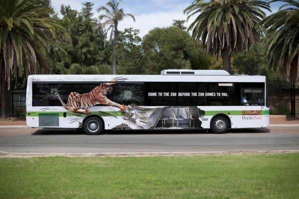 Bus attaccati da tigri selvatiche! [VIRAL]