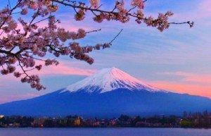 Creatives for Japan, è partita l'iniziativa Ninja per il Giappone