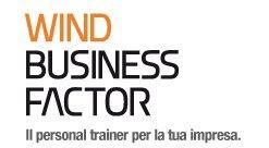 Logo Wind Business Factor