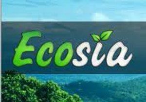 Ecosia, il motore di ricerca Green