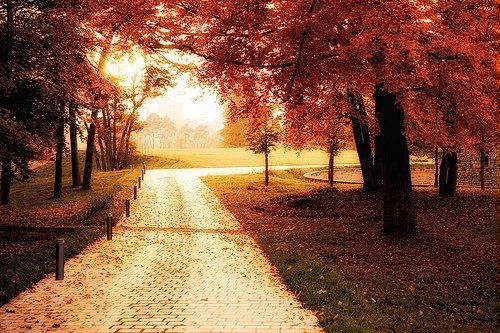 L'estate lascia spazio ai colori dell'autunno