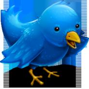 Novità su Twitter: arrivano Web Analytics e i Promoted Tweet