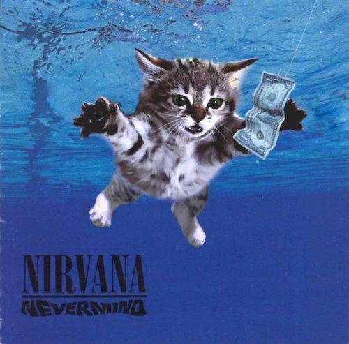 Dolci cuccioli si conquistano le copertine di leggendari album del rock