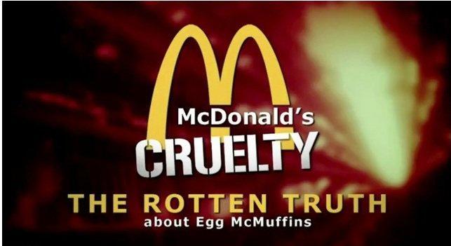 McDonald's: denuncia di trattamenti crudeli verso gli animali