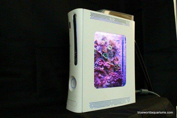 Trasformare la vostra Xbox in un acquario? Certo che si può!