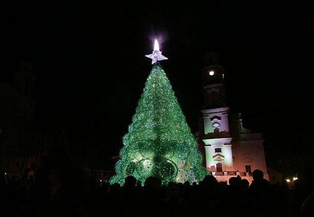 Quest'anno l'albero di Natale si tinge di green!