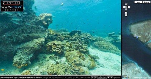 Google Maps si tuffa nella Grande barriera corallina