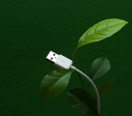 Weevo, il generatore di qr code green