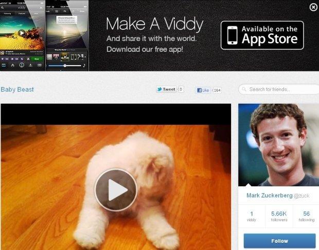 Viddy sarà il prossimo acquisto di Facebook?