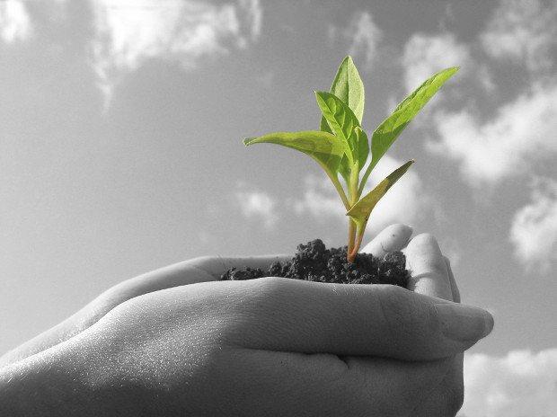 Strategie di crescita per startup e aziende di successo