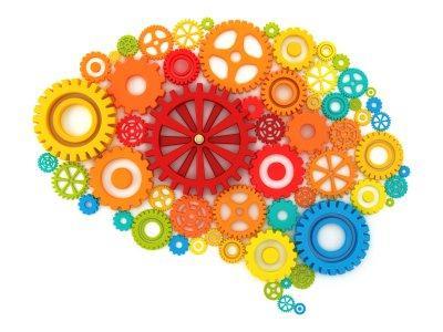 10 cose che non sapevi su come funziona la tua mente