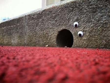 Eyebombing, la street art strizza l'occhio alla città