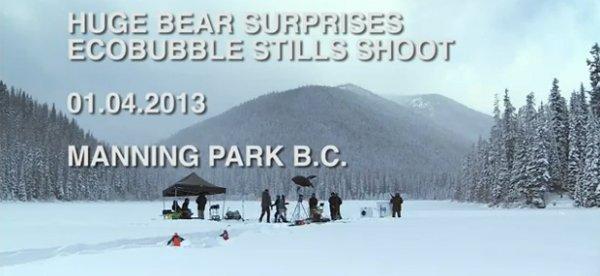Gli orsi diventano testimonial ecologici per Samsung [VIDEO]