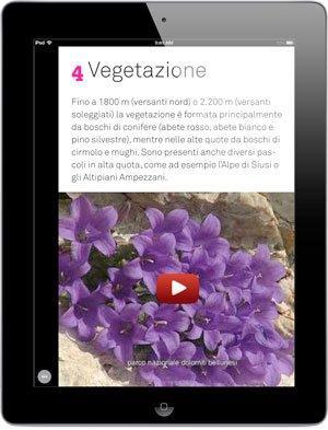 Trasformare cataloghi pdf in app per iPad? Si può con Pdf2iPad!