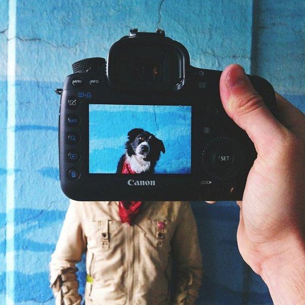 Tale cane, tale padrone: il progetto fotografico Petheadz