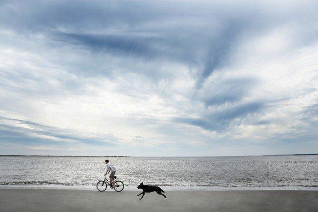 Tabbid: delega la tua routine quotidiana per avere più tempo libero