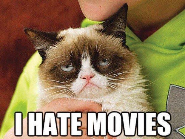 Il film di Grumpy Cat, un contratto hollywoodiano per il micio più imbronciato del web
