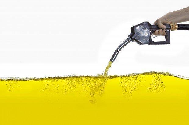 Biocarburanti: il nuovo latifondo tra un piatto di pasta ed un pieno di benzina