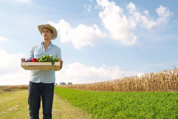 Rural Hub, quando la startup nasce nei campi
