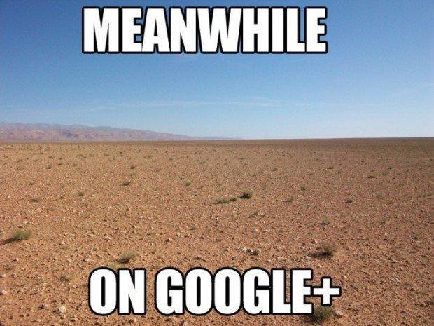 I numeri di google Plus