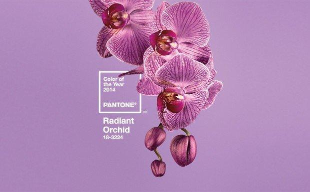 Pantone: il colore del 2014 è Radiant Orchid
