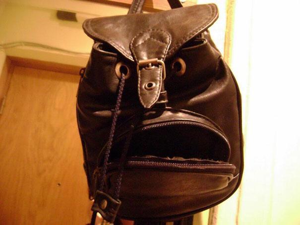 FacesPics: le facce nascoste negli oggetti quotidiani spopolano su Twitter