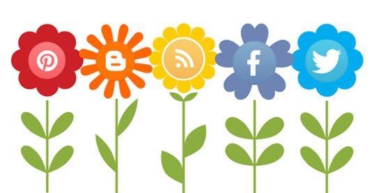 dopamina e social media