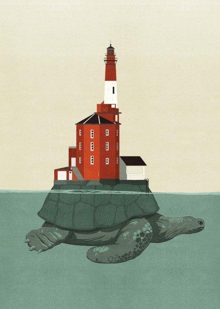 SHOUT_turtle