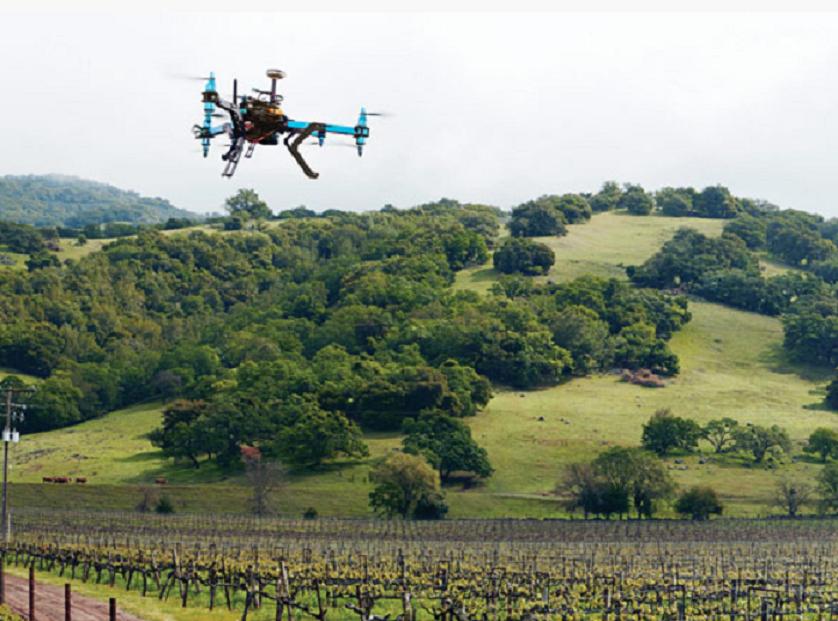 Farm 2050. Tecnologia a disposizione delle startup agricole