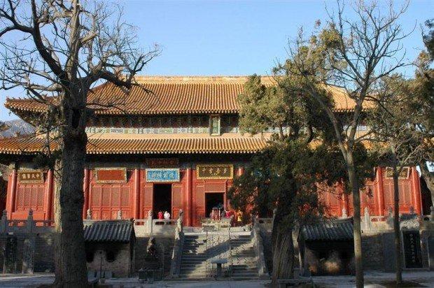 A scuola di business dai monaci Shaolin
