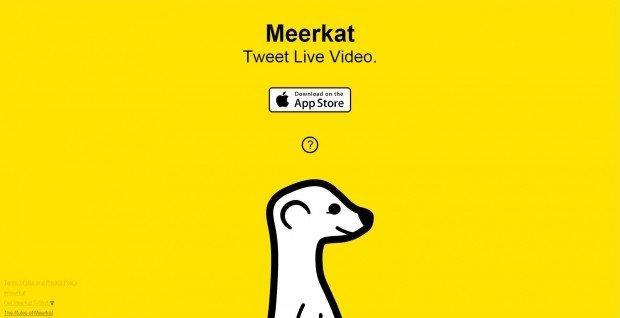 Meerkat, la live streaming app che spaventa Twitter