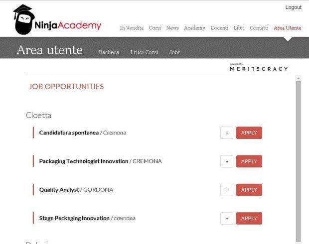 Meritocracy e Ninja Academy