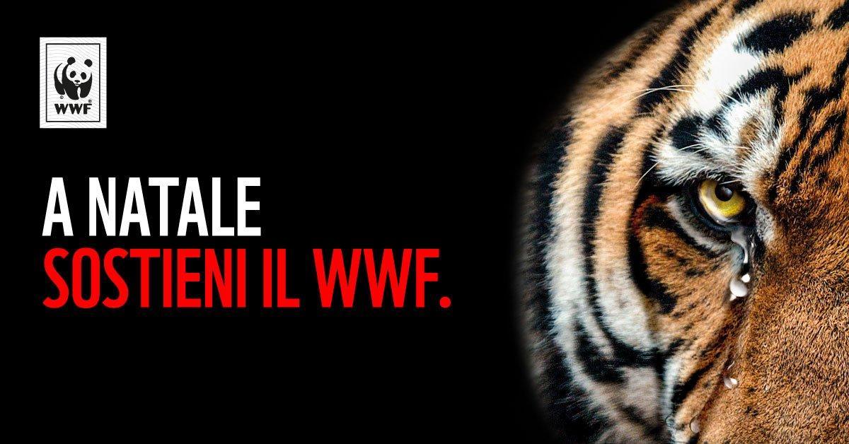 Adotta una specie in pericolo, la campagna social virale del WWF