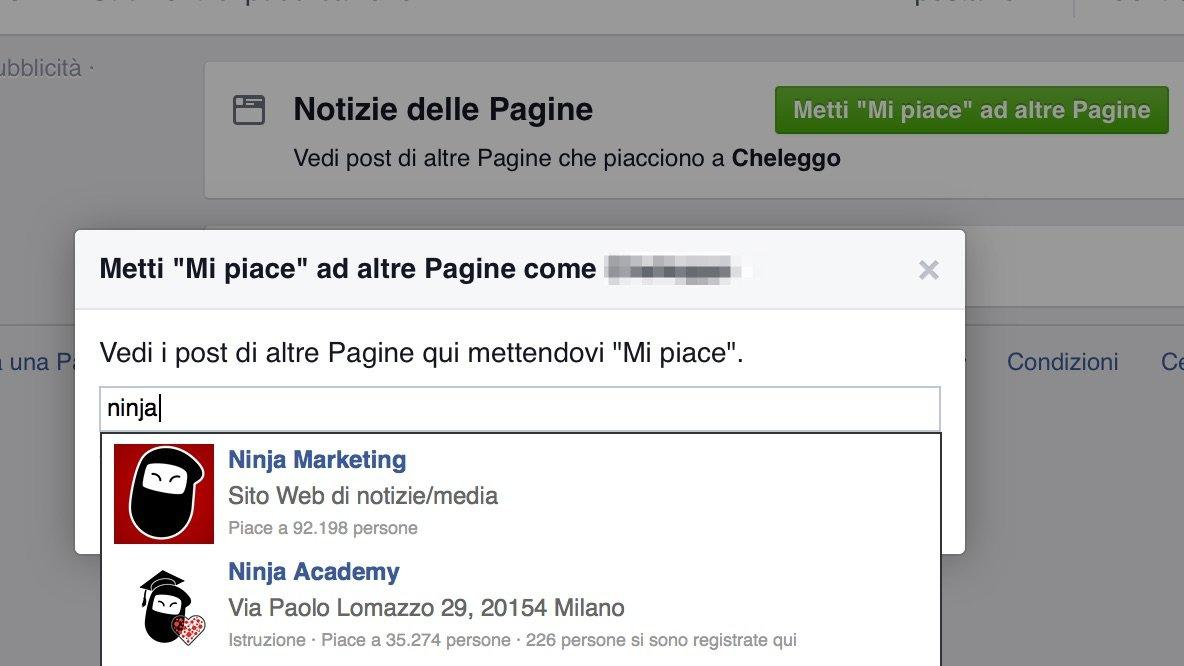 Guida Facebook Business Manager 16