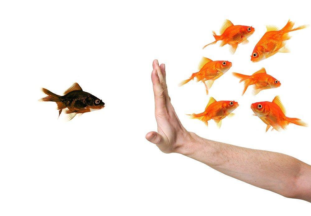 I big data e il pericolo discriminazione5