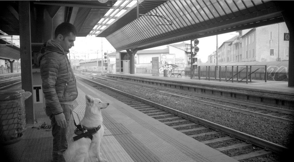 Dogeyes, il programma che offre una seconda possibilità per ipovedenti e cani abbandonati