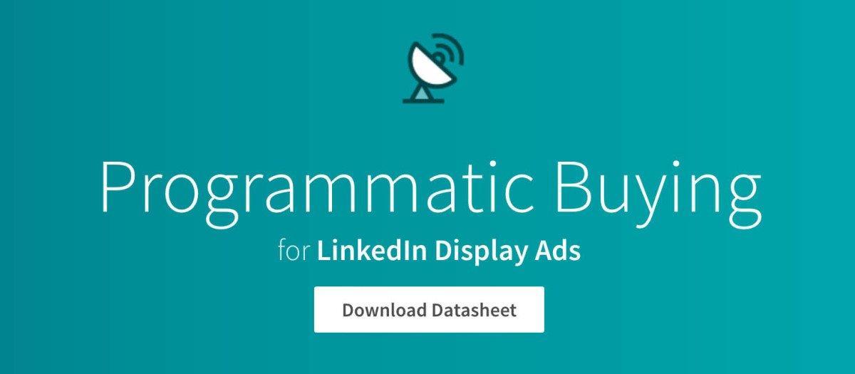 LinkedIn lancia Programmatic Buying, targetizzazione estrema negli annunci display