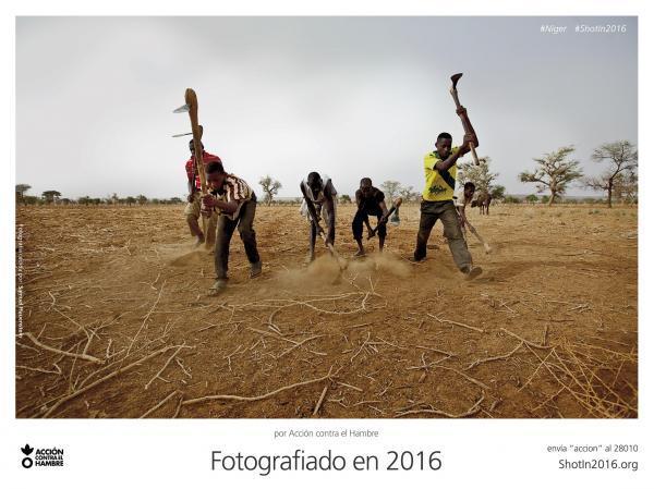 action-against-hunger-niger-600-69239